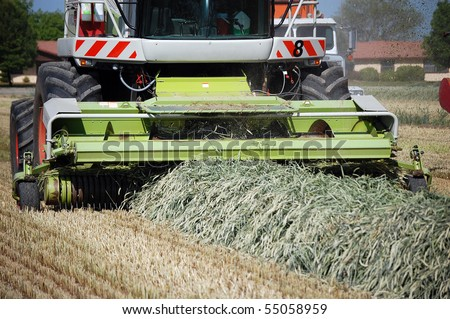 Farm Tractor Gathering Cut Hay Silage - stock photo