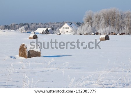 Farm with a barn, horses and bales of hay laying in the snow on farm winter field - stock photo