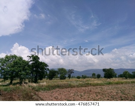 Farm with daytime sky