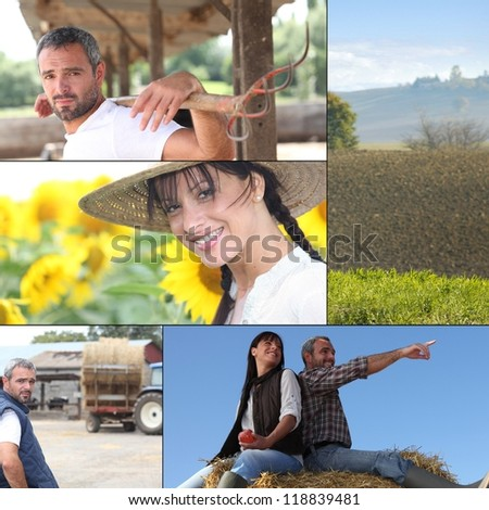 Farm work - stock photo