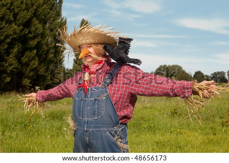 Farmer acting as a living scarecrow on his field - stock photo