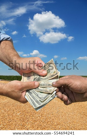 Farmer and buyer hands holding dollar banknote, wheat crop in background
