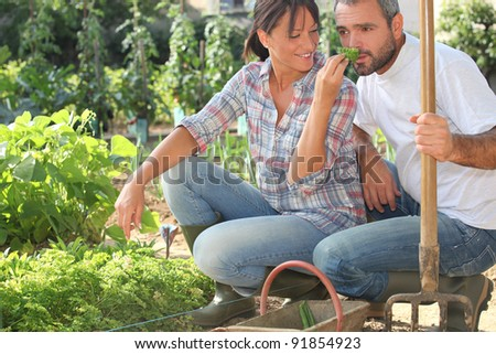Farmer and wife gardening - stock photo