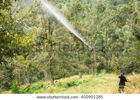 Farmer Crop spraying pesticides fertilizers in durian tree.Selective focus.Crop spraying concept. - stock photo