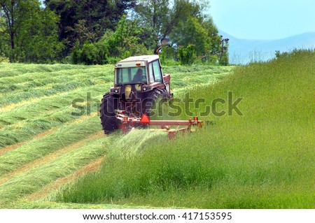 Farmer cuts hay in a field in Tennessee.  Hay is lush and green and lays over in rows after being cut. - stock photo
