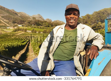 Farmer driving tractor in the fields during harvest in countryside. Vineyard worker sitting on his tractor smiling. - stock photo