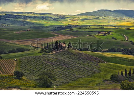 farmer estate with vineyards  at sunrise in San Quirico d'Orcia, Tuscany, Italy