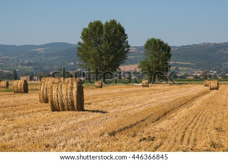 Farmer field with hay bales in umbria, Italy - stock photo