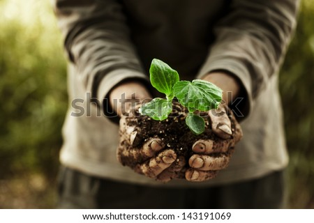 farmer hands holding a planted. - stock photo