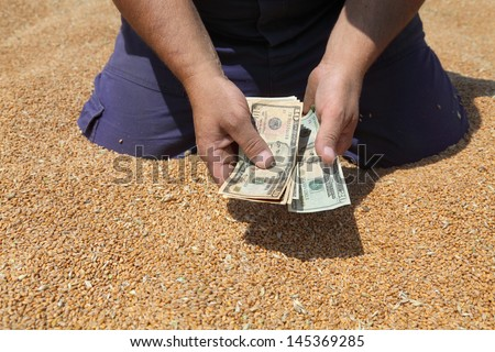 Farmer hands holding dollar banknote at wheat crop - stock photo