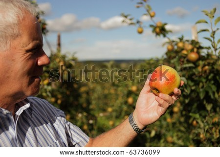 Farmer holding a red apple