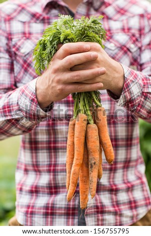 Farmer holding bunch of organic carrots wearing a check shirt - stock photo
