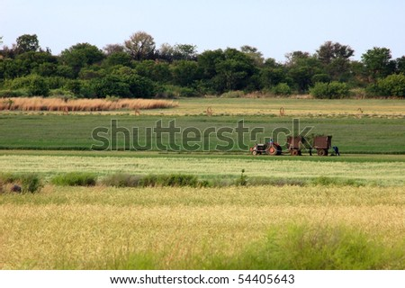 Farmer in Africa working in his field. - stock photo