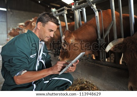 Farmer in barn using digital tablet - stock photo