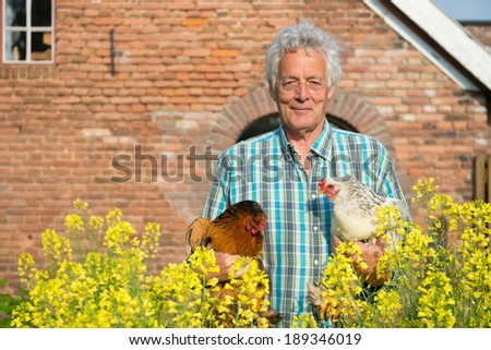 Farmer outdoor is carrying chickens - stock photo