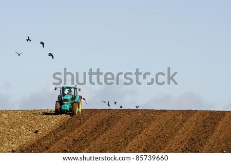 Farmer plowing field with circling crows. North west coast, Tasmania, Australia - stock photo