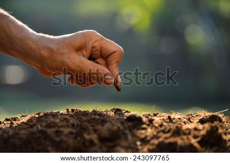 Farmer's hand planting a seed in soil - stock photo