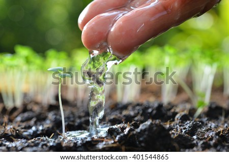 Farmer's hand watering a young plant - stock photo