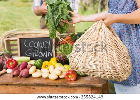 Farmer selling his organic produce on a sunny day - stock photo