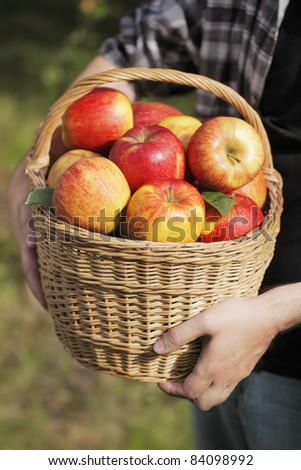 Farmer showing a basket full of apples.