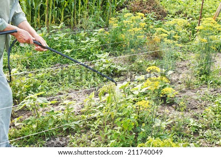 farmer spraying of pesticide on country garden in summer
