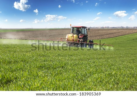 Farmer spraying wheat field with tractor sprayer at spring season