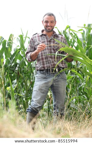 Farmer standing in a cornfield - stock photo