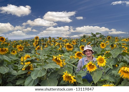 farmer standing in  a sunflower field - stock photo