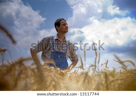 farmer standing in a wheat field - stock photo