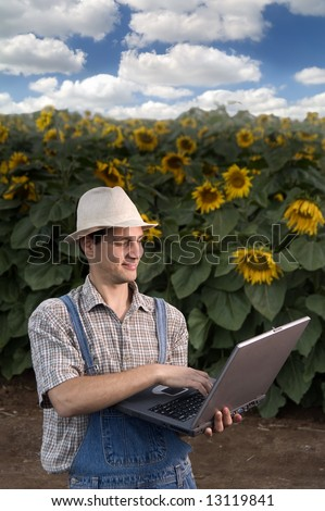 farmer standing in front of a sunflower field with a laptop computer - stock photo