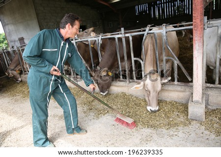 Farmer sweeping floor in barn - stock photo