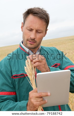 Farmer with electronic tablet analyzing wheat ear - stock photo