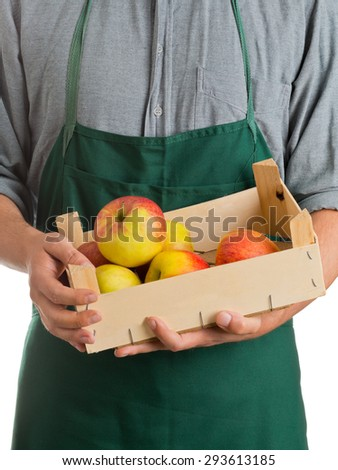 Farmer with green apron and grey shirt holding crate with fresh harvested apples isolated on white background - stock photo