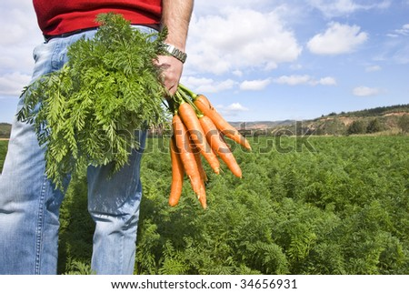 Farmer with newly picked carrots - stock photo