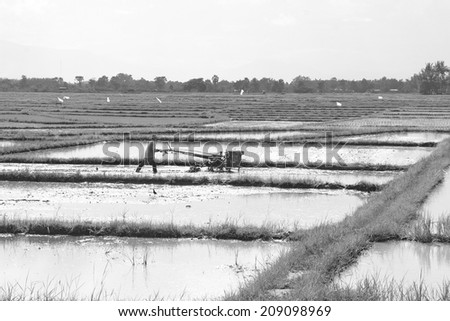 farmer with rice farm tractor vintage old technology black and white monochrome - stock photo