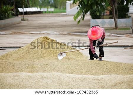 farmer working in field. - stock photo