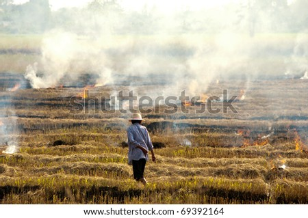 Farmers are burning fields. - stock photo