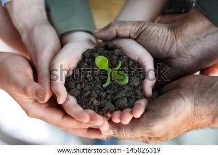 farmers family hands holding a fresh young plant, symbol of new life and environmental conservation - stock photo
