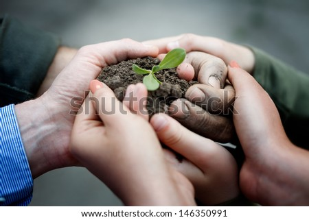 Farmers hands holding a fresh young plant. New life and environmental conservation concept - stock photo