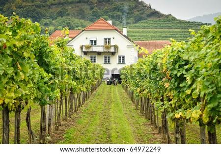 Farmers House in an austrian  Vineyard - stock photo