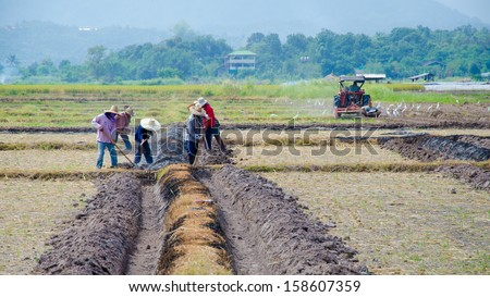 Farmers thailand prepared for cultivation