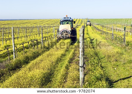 Farmers with tractors spraying the vineyard with pesticides - stock photo