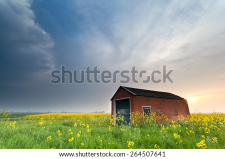 farmhouse on rapeseed field at sunset, Holland - stock photo