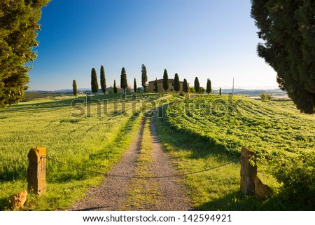 Farmhouse with cypress and blue skies, Pienza, Tuscany, Italy - stock photo