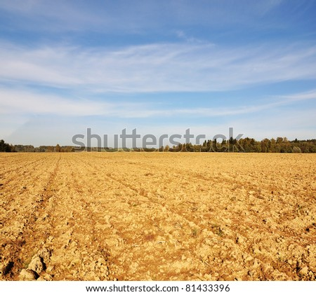 Farming field tillage near forest at sunny autumn day