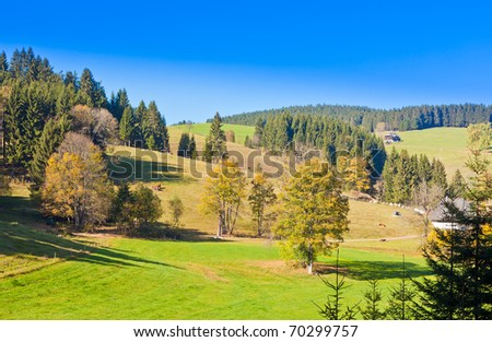 Farmland, farm houses and forested hills in Black Forest, rural Germany. - stock photo