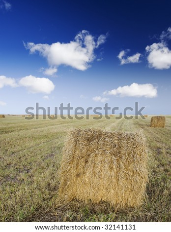 Farmland harvest