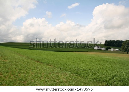 Farmland Hills - 3 - stock photo