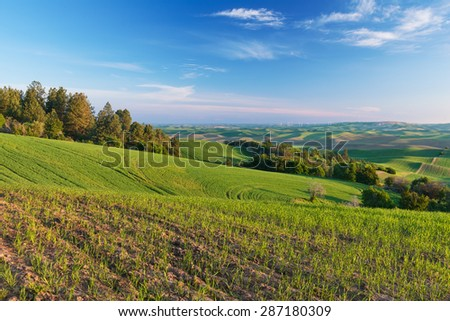 Farmland in early morning, Steptoe Butte State Park, Oakesdale, Washington - stock photo