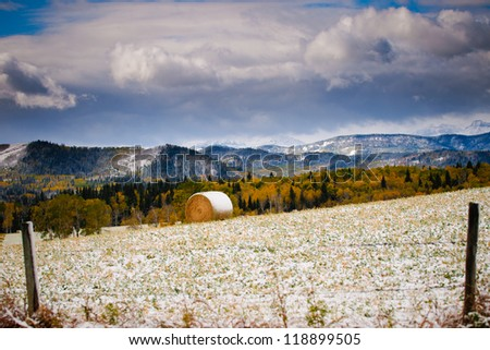 Farmland in the Alberta prairies, after the first snows of winter - stock photo